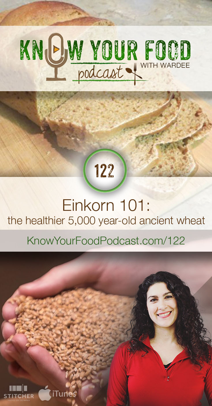 Einkorn 101 | Einkorn is civilization's first wheat, grown by farmers 5,000 years ago. It's healthy and tasty -- and my family has been exclusively baking with it for more than a year because we find it digests better and doesn't trigger seasonal allergies. Hear all about the differences between it and modern wheat in today's podcast with guest Jade Koyle from Ancient Grains. | KnowYourFoodPodcast.com/122