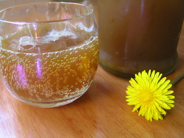 cup of fizzy dandelion soda with a dandelion flower