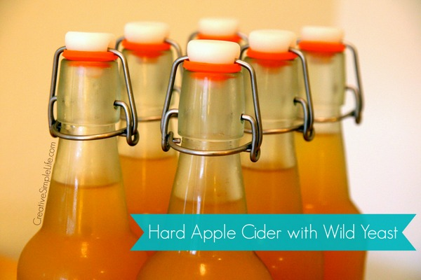 six flip top bottles of hard apple cider in two rows