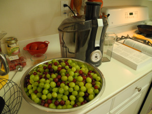 large stainless steel bowl of green and red grapes on a kitchen counter