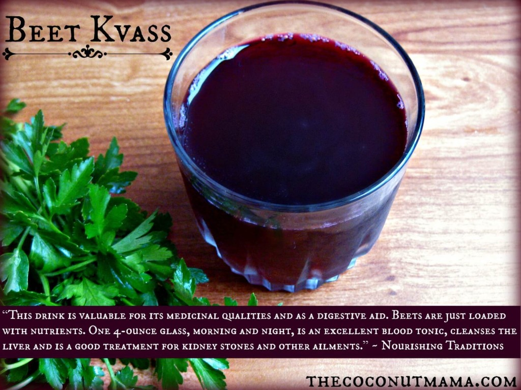 cup of beet kvass on a wooden table with green plant next to it