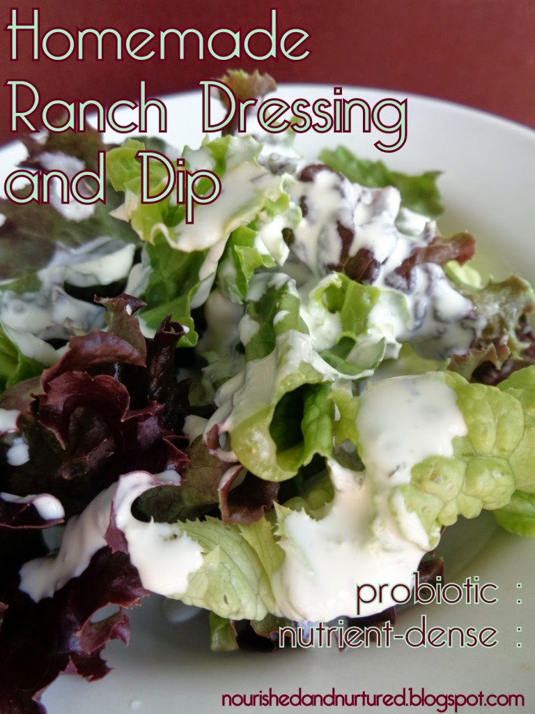 28 Fermented and Probiotic Salad Dressings   Know the feeling? You get attached to a certain bottled or restaurant dressing; then you find out it's full of junk. I can help! In this round-up of 28 fermented and probiotic-filled salad dressings, you're sure to find at least one that's just right!   TraditionalCookingSchool.com