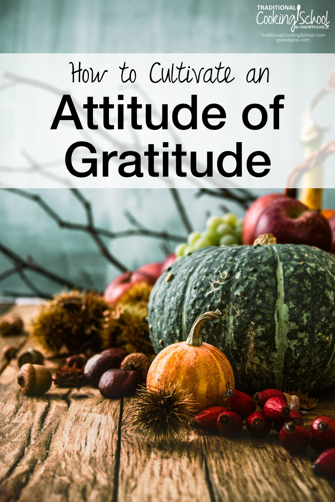 How to Cultivate an Attitude of Gratitude | Maintaining an attitude of gratefulness? That can be a challenge for anyone. Life isn't always easy, but we can always choose to be grateful, no matter what our circumstances. Here are four ways in which I'm working to maintain an attitude of gratitude during this Thanksgiving season. | TraditionalCookingSchool.com