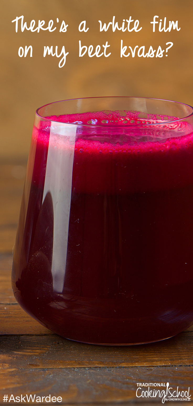 Beet kvass is a fermented probiotic beverage made using beets, salt, and water. But is it okay to have a white film on beet kvass? Watch, listen, or read to find out! | AskWardee.tv