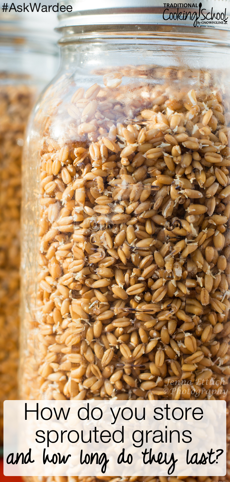 """How do you store sprouted grains, and how long do they last?"" asks Sue. Watch, listen, or read to find out the answer PLUS discover how sprouting grains makes baking cookies so easy — just mix and pop them in the oven! 