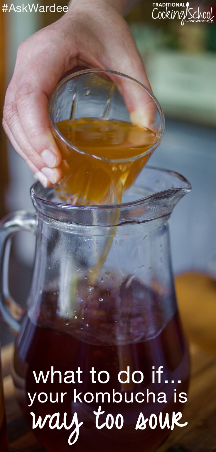 What can you do if your Kombucha is way too sour? Watch, listen, or read to learn how to keep your Kombucha from getting too sour, and how to fix it if it does!