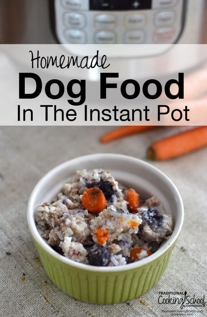 green bowl of homemade cooked dog food with instant pot in the background