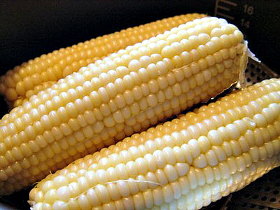 close up image of three corn on the cob
