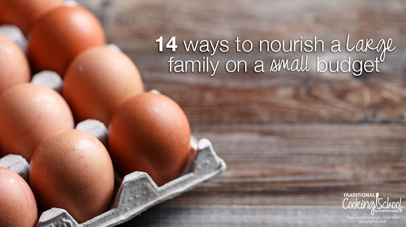 14 Ways To Nourish A Large Family On A Small Budget | Got a large family and a small food budget? Yet, due to your high standards for nutrition, you shudder at the thought of filling hungry tummies with cheap, non-nutritious filler foods? Here are 14 ways to feed a large family on a small budget. (These tips apply to smaller families, too!) | TraditionalCookingSchool.com