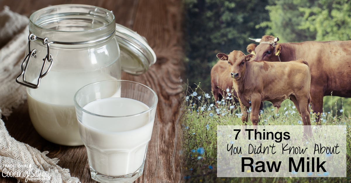 Best Island Beaches For Partying Mykonos St Barts: 7 Surprising & Fun Facts About Raw Milk You Didn't Know