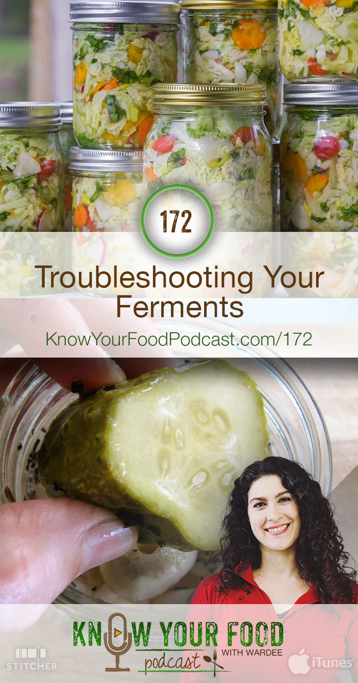 Troubleshooting Your Ferments (KYF172) | Even though it's safe and easy, fermentation problems do come up now and then. Today we're all about troubleshooting ferments. Whether it's not bubbling, it's mushy, or you just don't like it. Watch, listen, or read to get the answers for your common fermenting problems. | KnowYourFoodPodcast.com/172