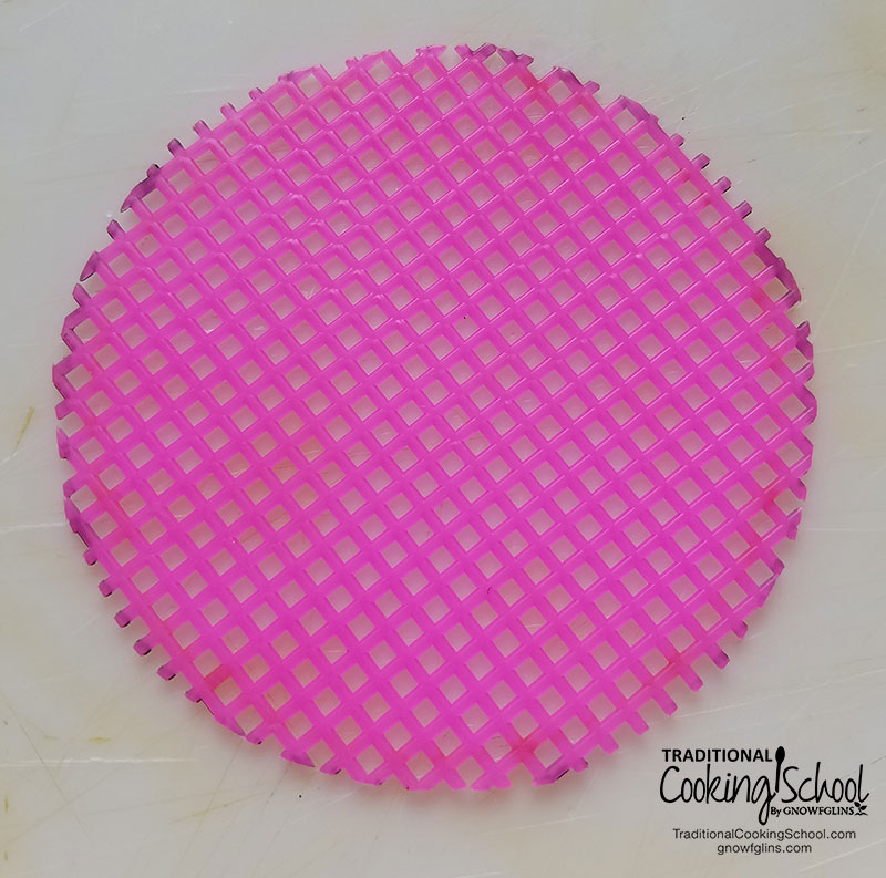 DIY Sprouting Lids {for just 5 cents!} | Want to try some sprouting? A sprouting screen will run you about $7. If you want 4 jars of sprouts going at the same time, that's $28. It adds up! Or, you can do what Morgen did and make DIY sprouting lids for just 5 cents each! Here's how! | TraditionalCookingSchool.com