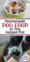homemade dog food in the instant pot with text overlay and photo of boston terrier