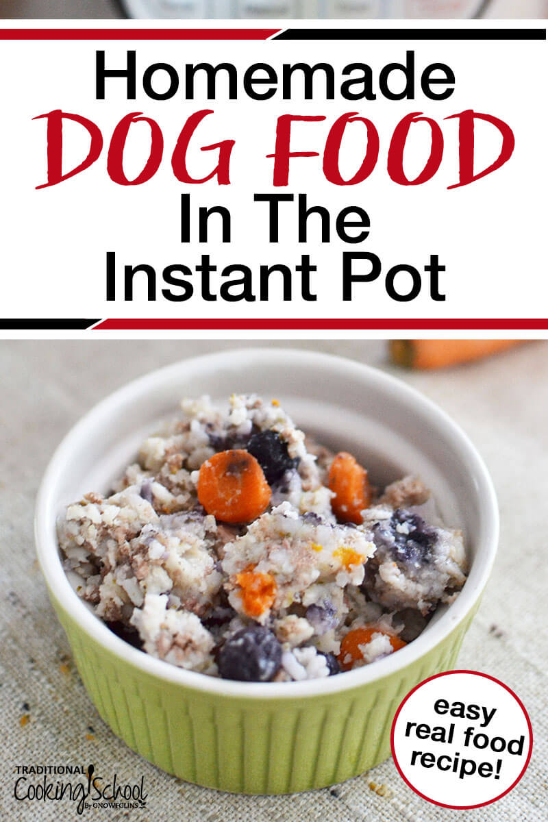 homemade dog food in the instant pot with text overlay