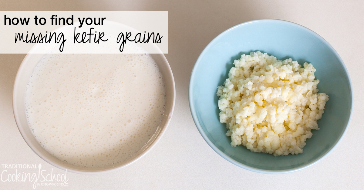 Uh-oh. You've got a finished batch of kefir but...the grains are nowhere to be found. Anna P. has a case of missing kefir grains too. Watch, listen, or read to learn how to find kefir grains when they seem to have disappeared. | AskWardee.tv