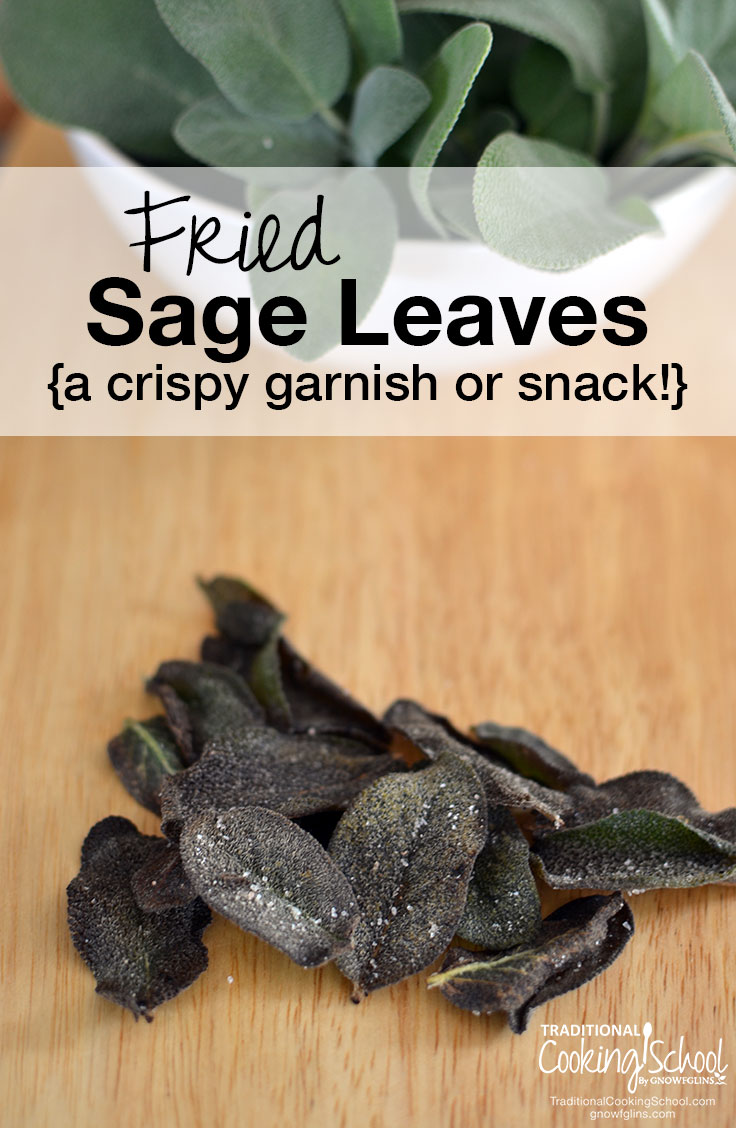 Fried Sage Leaves { a crispy garnish or snack!} | When one of my friends passed by my huge sage plants, she casually commented, 'That sage is really nice. You should fry it.' Fry it??? Sure enough, fried sage is a real thing! | TraditionalCookingSchool.com