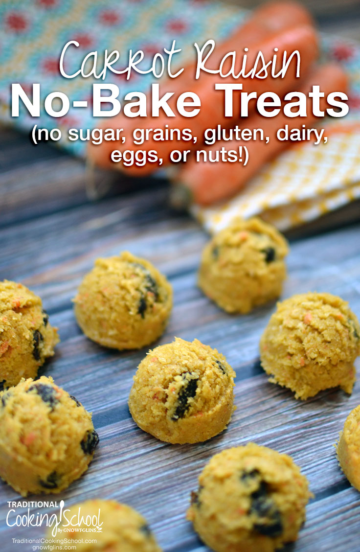 Carrot Raisin No-Bake Treats (no sugar, grains, gluten, dairy, eggs, or nuts!) | You'd think that after removing grains, dairy, nuts, eggs, soy, peanuts, and sugar from a recipe that you'd be left with nothing right? These healthy no-bake treats contain NONE of that stuff, yet still make a yummy, satisfying snack or dessert! | TraditionalCookingSchool.com