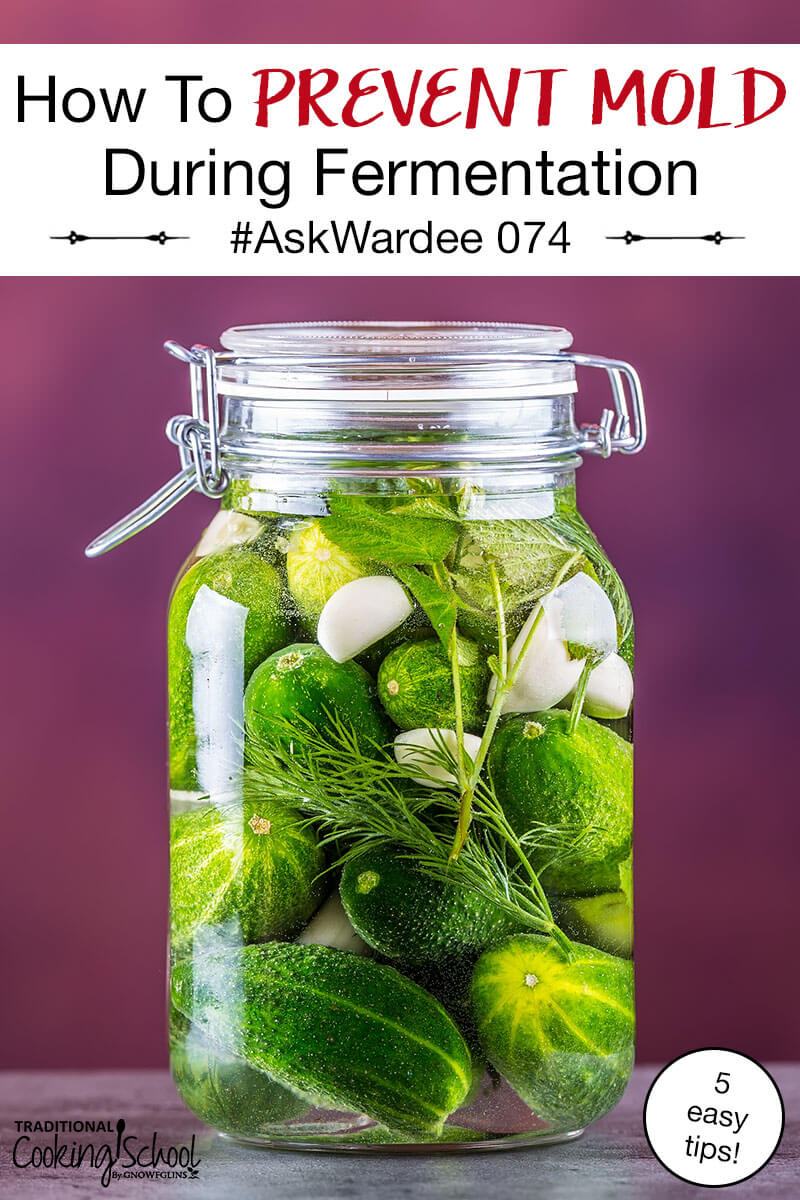Oh no! You tried fermenting and your ferment got mushy and grew mold! What to do? Is it safe to eat, or should you toss it? And most importantly, how to prevent mold during fermentation in the future? Watch, listen, or read to find out! | AskWardee.tv