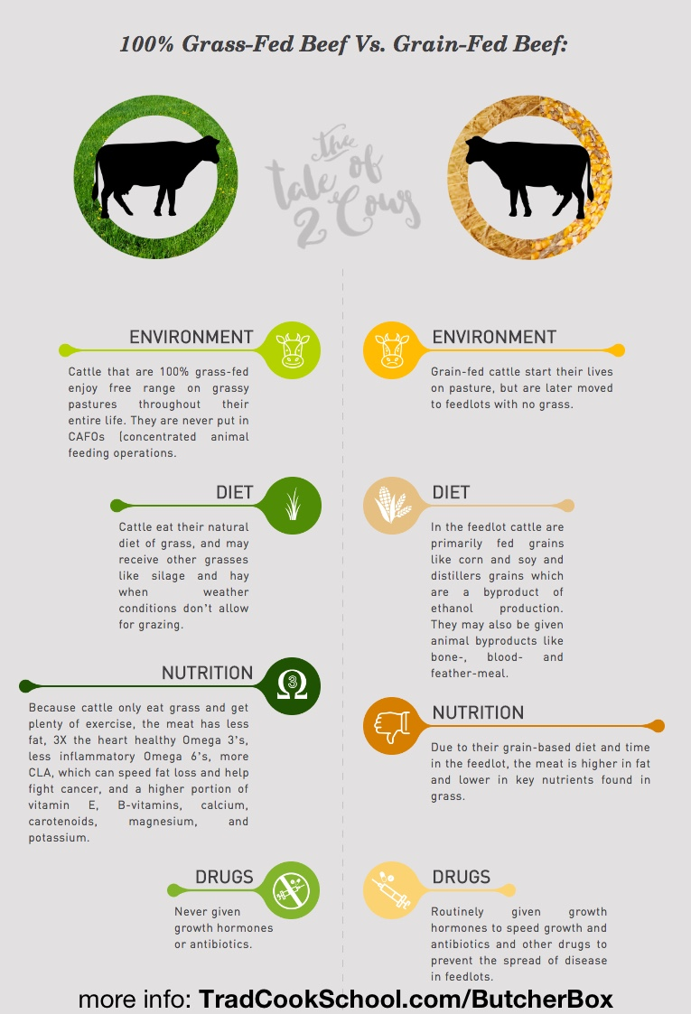 What does your meat have to do with hormone balance and inflammation? Does the kind of meat you buy *really* matter? Watch, listen, or read to learn the difference between grain-fed and grass-fed meat and why grass-fed really is better for you! | AskWardee.tv