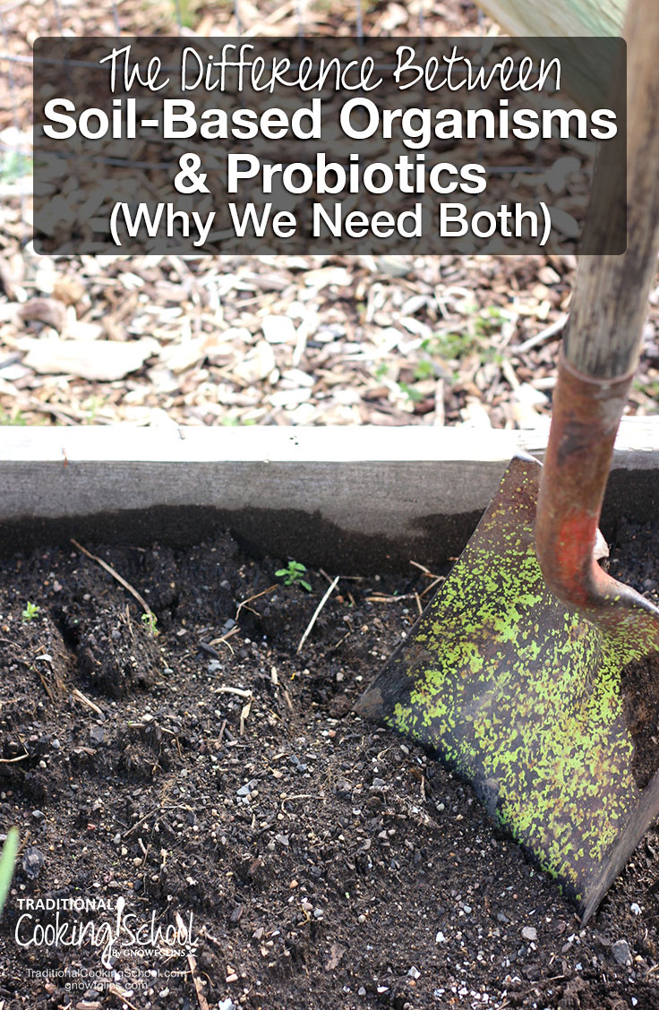 We want the living organisms in fermented foods and probiotic supplements, yet even greater benefits come from the live organisms in the dirt! Let's explore the difference between soil-based organisms and probiotics -- and why we need BOTH!