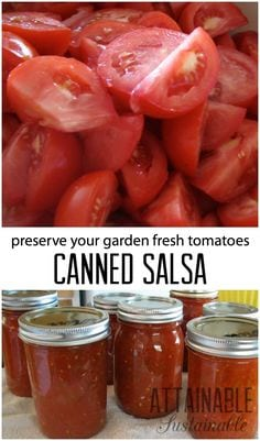 How To Can Tomatoes -- 16 Ways | When tomatoes are coming out your ears, there's only one thing to do... can them! Let's move on from plain tomato sauce! Here are 16 ways to can tomatoes -- salsa, soup, jam, spaghetti sauce, and MORE! | TraditionalCookingSchool.com