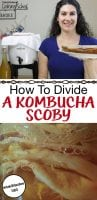 Close up of a SCOBY and a photo of a woman holding a plate with a SCOBY on it and kombucha in a fermenting crock in the background with text overlay.