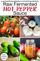 "Photo collage of tomatoes, garlic, hot peppers, and homemade hot sauce in a small jar. Text overlay says: ""Raw Fermented Hot Pepper Sauce (tangy, probiotic & spicy!)"""