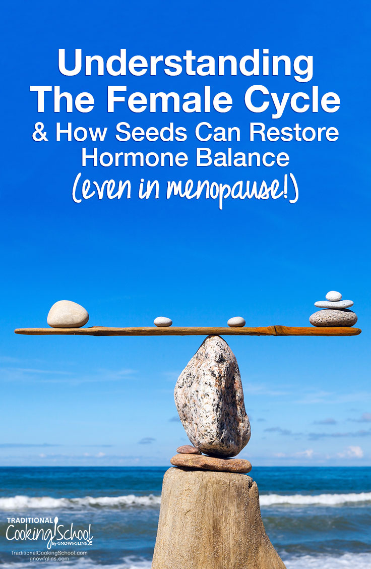 Understanding The Female Cycle & How Seeds Can Restore Hormone Balance (even in menopause!) | Once you have an understanding of the female cycle, you can heal from the hormone imbalances that cause PMS, heavy periods, low libido, and even the discomfort of menopause. Learn how to track your cycle and how seeds can help restore hormone balance -- yes, even if you're in menopause and don't have a period! | TraditionalCookingSchool.com
