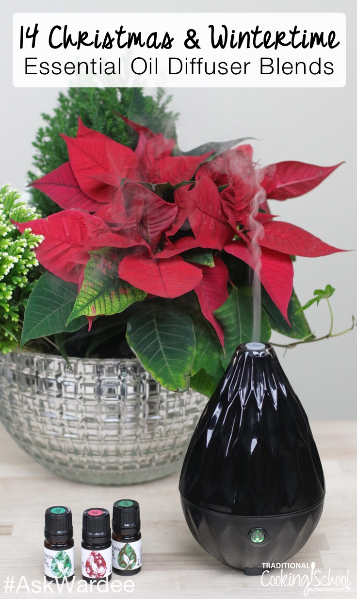 Conventional scented candles and air fresheners are full of endocrine-disrupting chemicals and are as toxic as second-hand smoke! But, what if you want to fill your home with holiday ambiance and smells? Watch, listen, or read to learn how to create delicious-smelling Christmas and wintertime essential oil diffuser blends that boast health benefits, too!