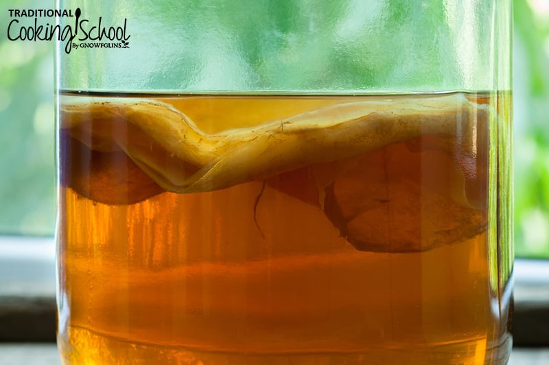 Slightly sweet, slightly sour, and a little bit fizzy, we're in love with KOMBUCHA! And we get so many questions and comments about this nourishing, probiotic drink that we can tell you're in love with it, too. From how to make and store Kombucha to how to store SCOBYs to Kombucha troubleshooting and MORE, The ULTIMATE Kombucha Guide has the answers to your brewing questions!