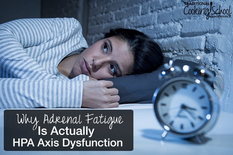 The hypothalamus-pituitary-adrenal loop produces hormones that regulate our blood pressure, libido, metabolism, and stress response. When interference happens, symptoms of a hormone imbalance occur: insomnia, fatigue, anxiety/depression, thyroid issues, and more. This used to be called 'adrenal fatigue', but was that accurate? Learn why adrenal fatigue is actually HPA axis dysfunction.