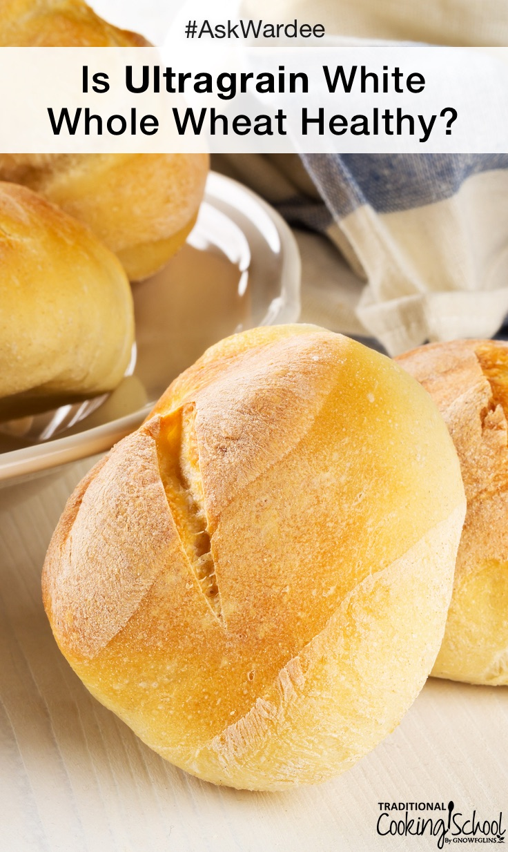 fresh baked bread rolls