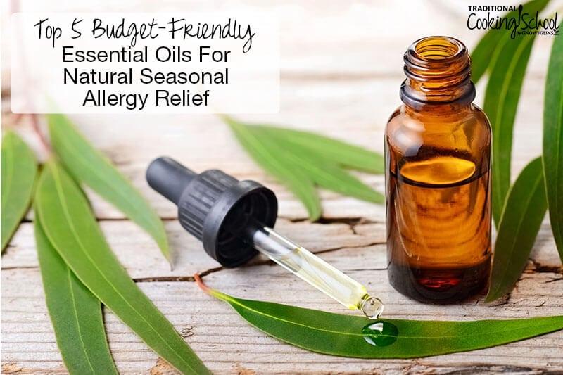 dropper bottle of eucalyptus oil with eucalyptus leaves