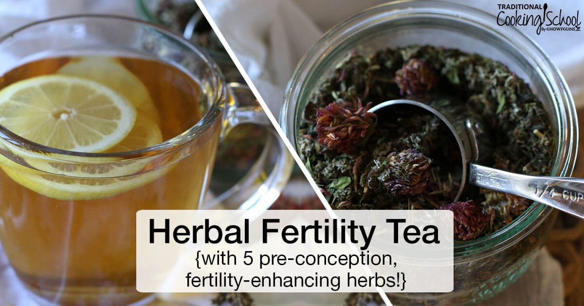 Herbal Fertility Tea {with 5 pre-conception, fertility-boosting herbs}