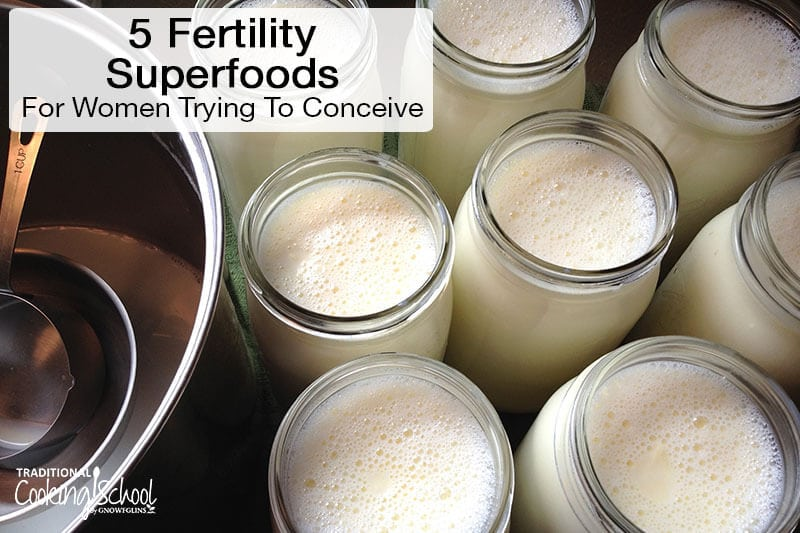 5 Fertility Superfoods For Women Trying To Conceive