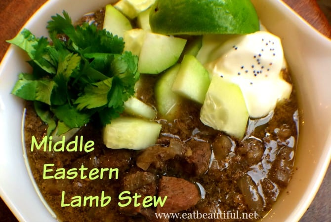 middle eastern lamb stew with cilantro and cucumbers