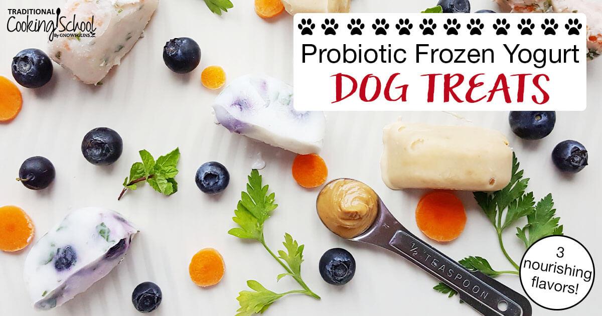 Probiotic Frozen Yogurt Dog Treats 3 Nourishing Flavors