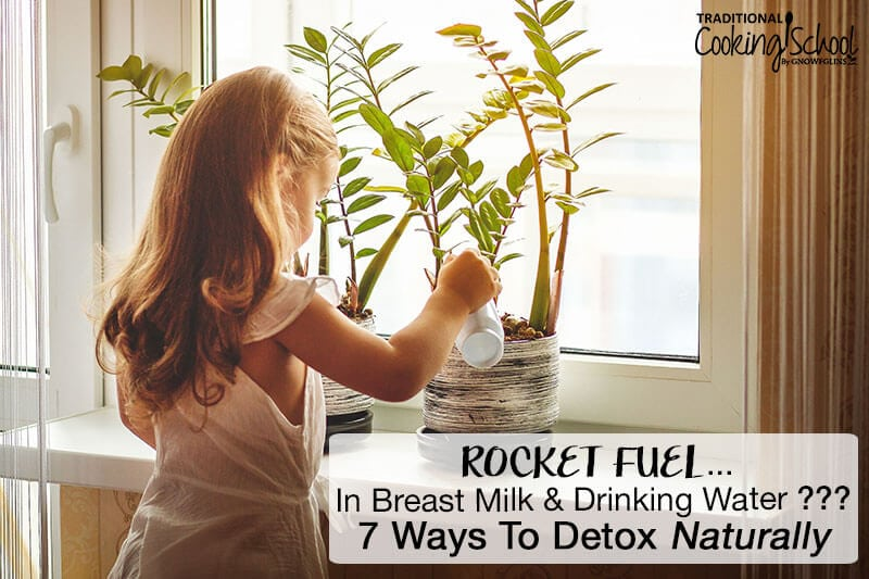 little girl watering detoxifying household plants