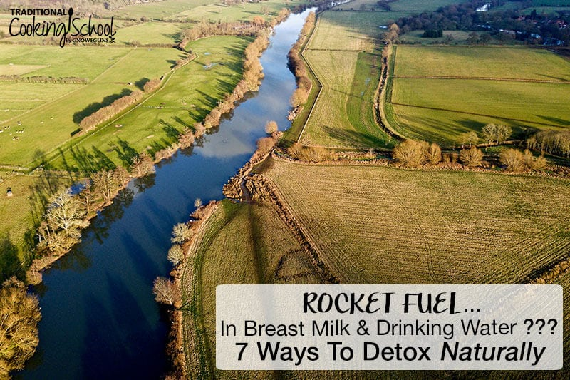 aerial view of river and fields with text overlay 7 ways to detox naturally
