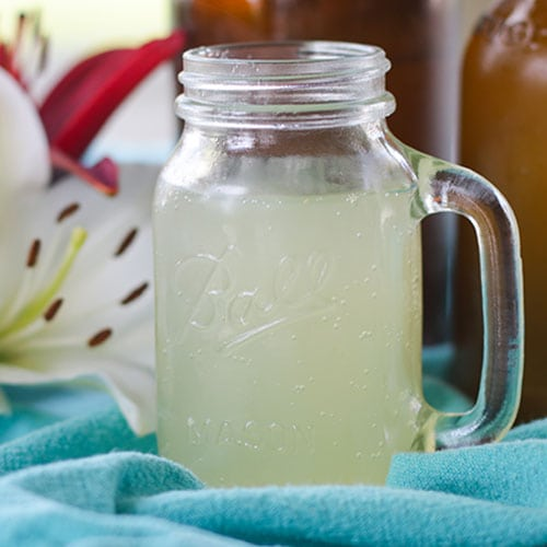 Honey-Sweetened Ginger Beer {probiotic, non-alcoholic, GAPS-friendly natural soda!}