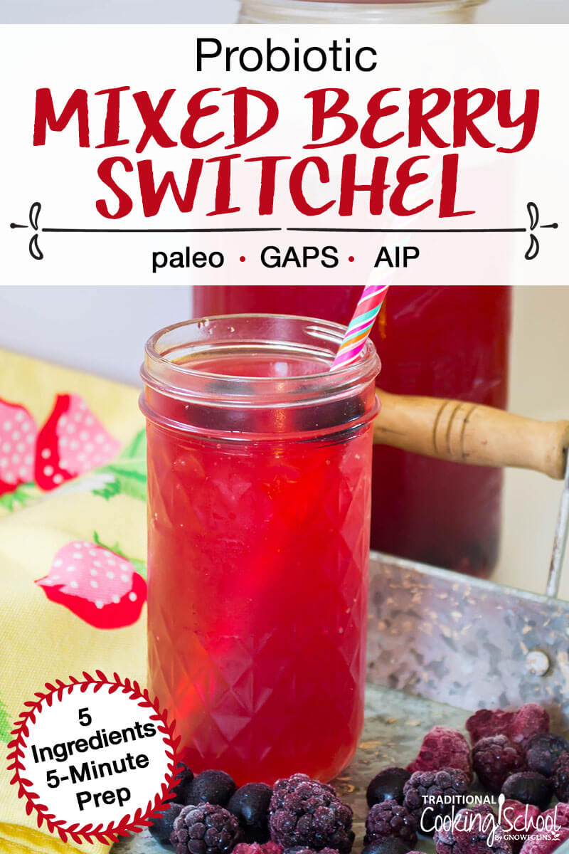 "probiotic mixed berry switchel with pink straw and text overlay ""Probiotic Mixed Berry Switchel: Paleo, GAPS, AIP"" Pinterest Pin"