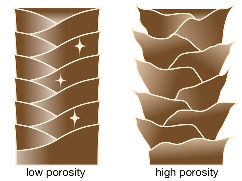 graphic of two different hair shafts, one with low porosity and the other with high porosity
