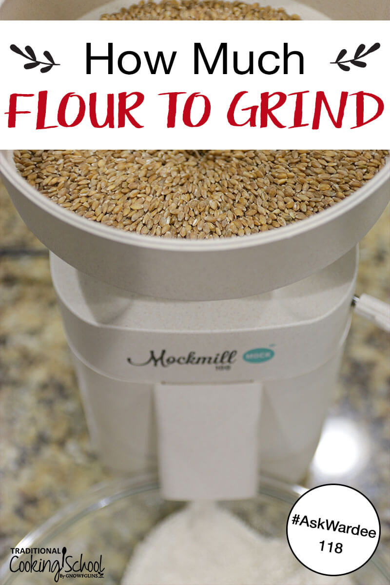 "home grain mill full of wheat berries grinding flour into a glass bowl with text overlay: ""How Much Flour To Grind"""