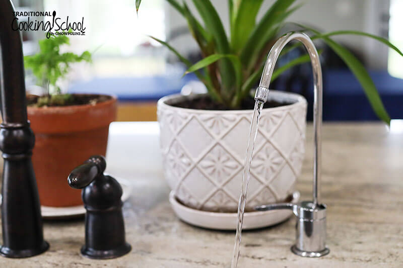 water filter faucet turned on so clean water is draining into the sink, with plant pots in the background and the kitchen faucet next to it