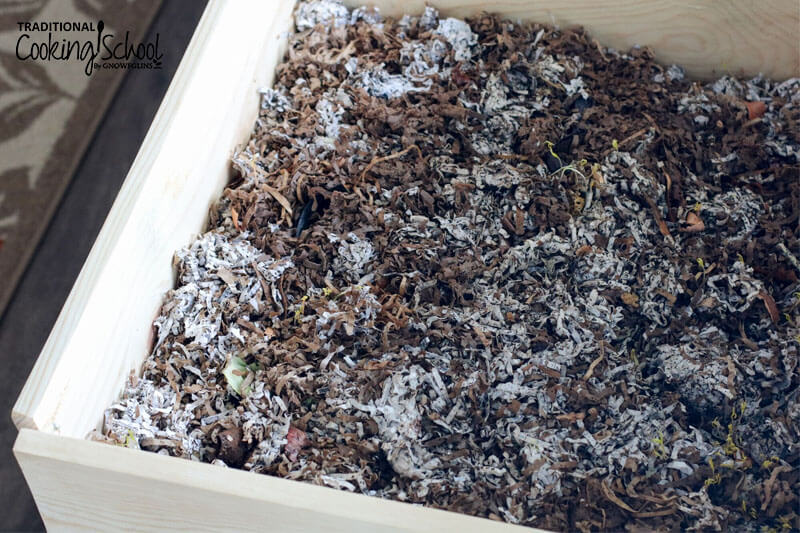 worm bin with bedding that is no longer fresh, and starting to decompose