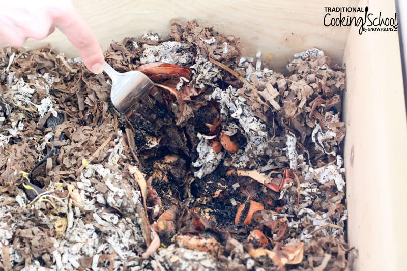man's hand holding a fork which is peeling back the top layer of a worm bin so the decomposing food scraps can be seen beneath
