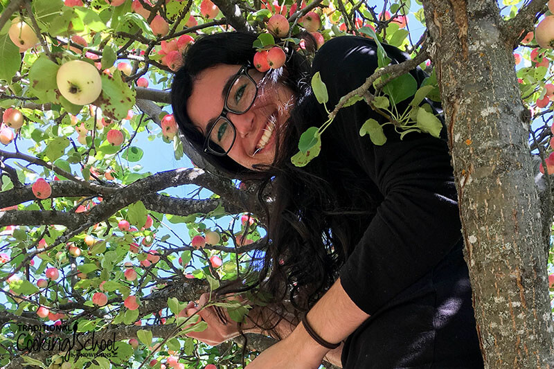 photo of a smiling woman in a crabapple tree, picking apples
