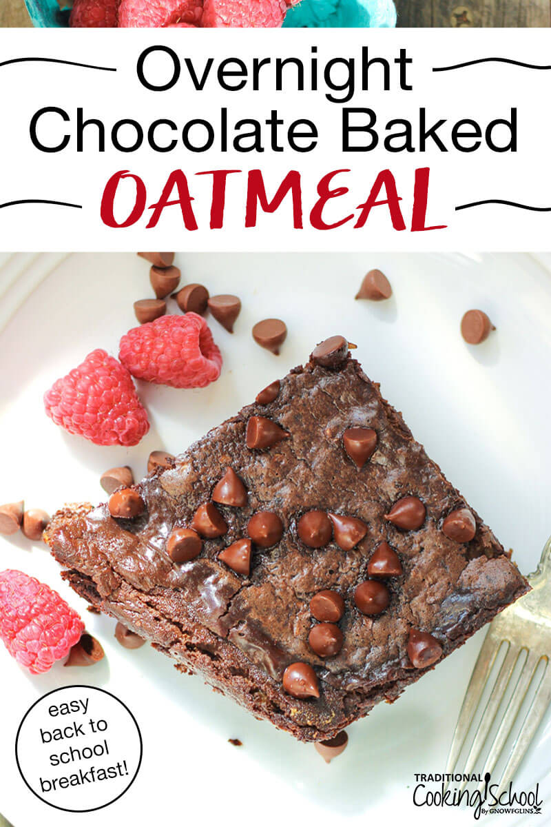 "baked oatmeal bar on a white plate with mini chocolate chips and fresh raspberries scattered over the top, with text overlay: ""Overnight Chocolate Baked Oatmeal (easy back to school breakfast!)"""