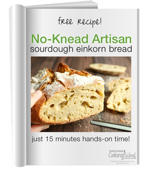 "screenshot of free pdf recipe titled: ""No-Knead Artisan Sourdough Einkorn Bread - just 15 minutes hands-on time!"""