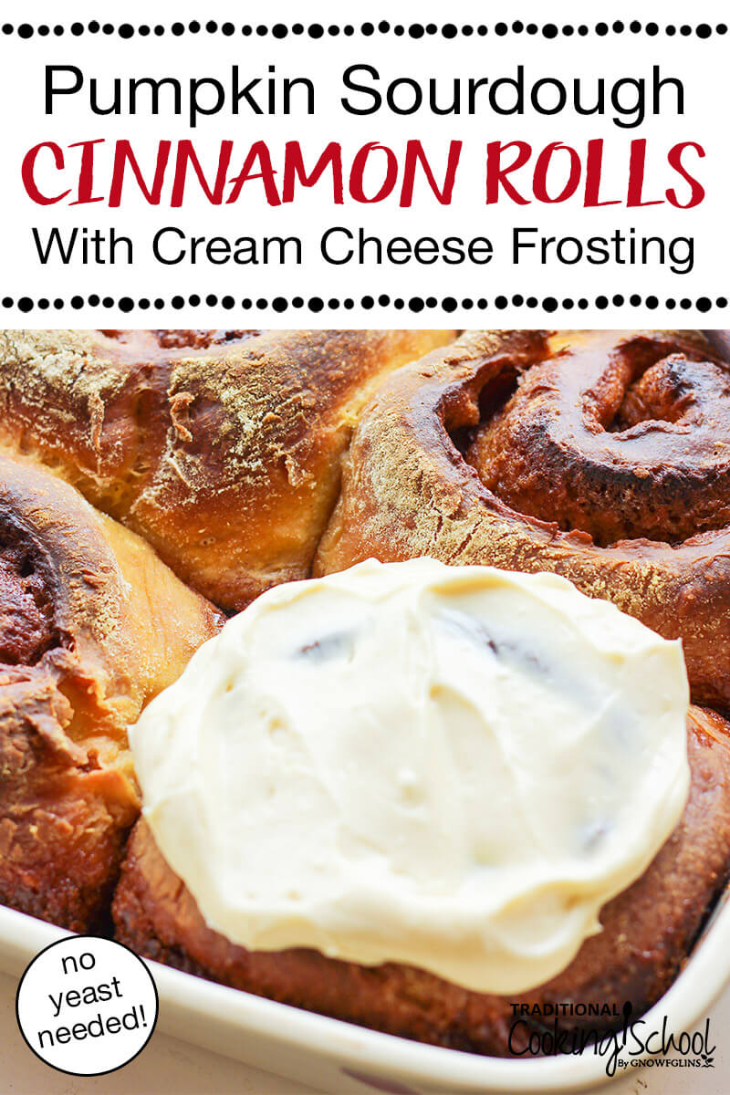 "four large pumpkin cinnamon rolls with a crusty, golden topping, and one roll slathered with cream cheese frosting, with text overlay: ""Pumpkin Sourdough Cinnamon Rolls With Cream Cheese Frosting (no yeast needed!)"""